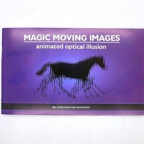 Animated optical illusions